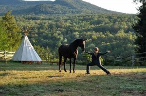 maine-yoga-retreats-horses-20181011-002