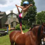 yoga-horses-002