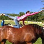 yoga-horses-004