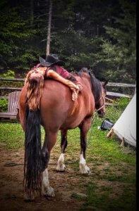 yoga-horses-20180709-0538