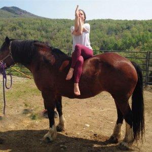 yoga-horses-20180709-0541