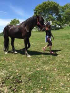 yoga-horses-20180709-0692